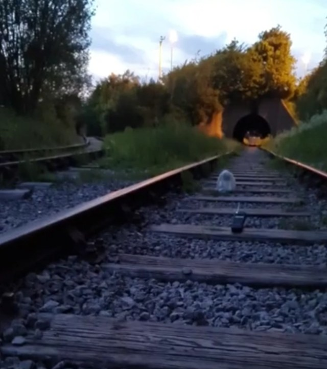 The Worlds Oldest Railway Ghost Story |Haunted Middleton Rail