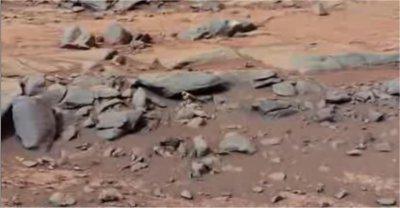 Curiosity: Un oiseau sur Mars?