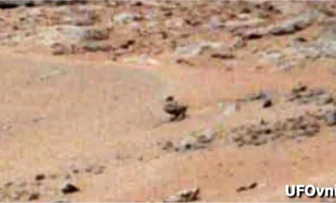 Curiosity: Une grenouille et un canard sur Mars