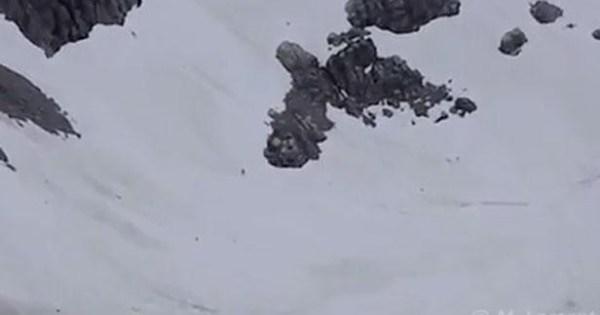 Un alpiniste croit avoir aperçu un Bigfoot
