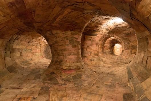 Pénétrez dans ce mystérieux labyrinthe de racines d'arbres