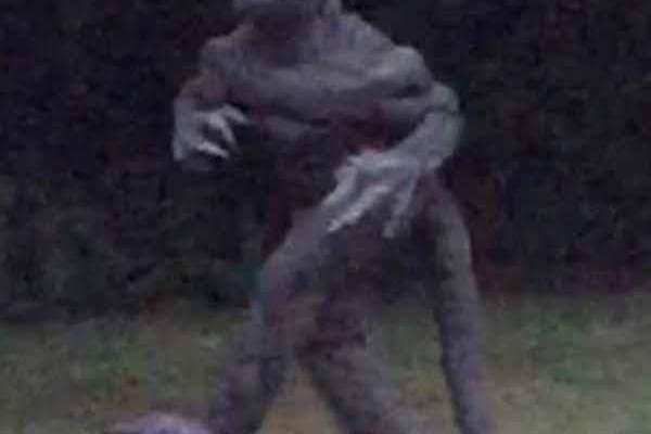 Le célèbre Lézard des marécages de Bishopeville a fait une rare apparition