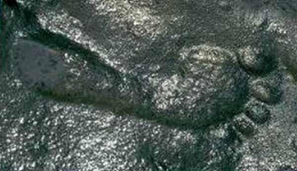 Une empreinte humaine vieille de 290 millions d'années laisse les chercheurs tout pantois