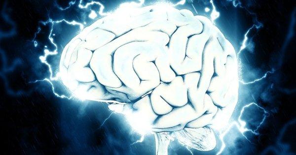Conscience ou inconscience: Cloner l'esprit, c'est presque possible