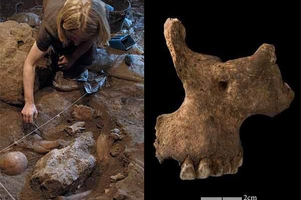 Maroc : L'ADN humain le plus ancien d'Afrique révèle des indices sur une culture ancienne et mystérieuse