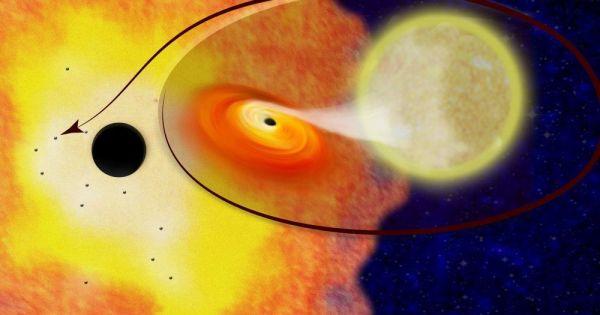 Des trous noirs en grand nombre repérés au centre de la Voie lactée