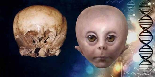 L'histoire derrière le crâne de l'Enfant des Etoiles : Qui dit la vérité ?