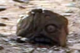 Un Goblin trouvé sur Mars