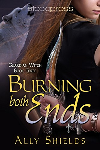 Review: Burning Both Ends – Ally Shields