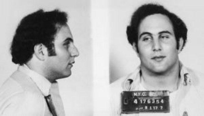 berkowitz_arrest