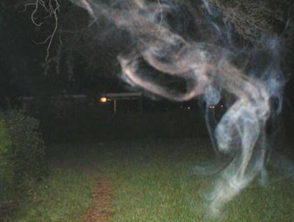Ecto Mist