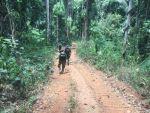 PF mostra grilagem de 15 mil ha em terra de índios