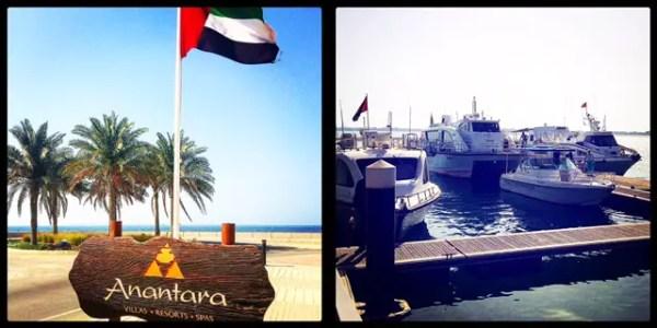 Sir Bani Yas Island. Abu Dhabi.