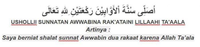 Tuntunan sholat bacaan niat sholat sunnah awwabin
