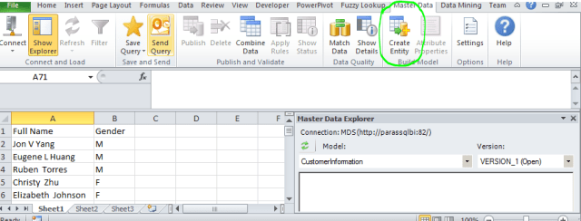 create entity Master Data Services Excel