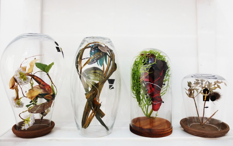 CREDENZIALI - Installazione - Ampolle Botaniche - Paratissima 2016