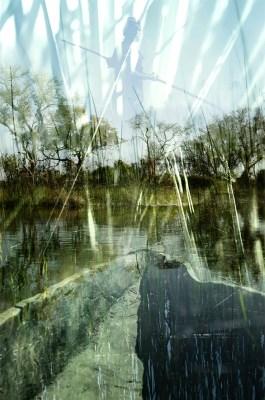 STREAM OF CONSCIOUSNESS_Okavango © Gabriele Zago