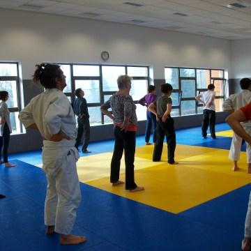 Echanges entre disciplines : qi gong, aïkido, shiatsu – février 2017 – Arnay-le-Duc