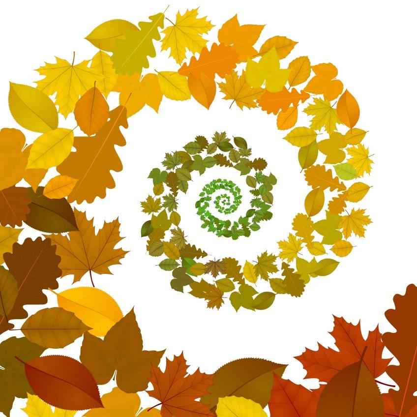 Les saisons du calendrier chinois