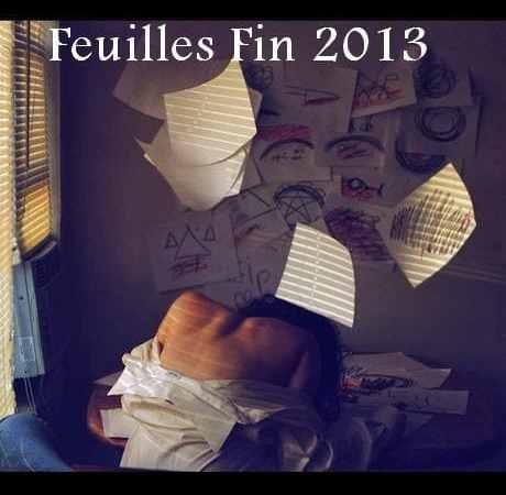 Feuilles fin 2013