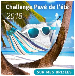 Logo Challenge Pavé de l'été