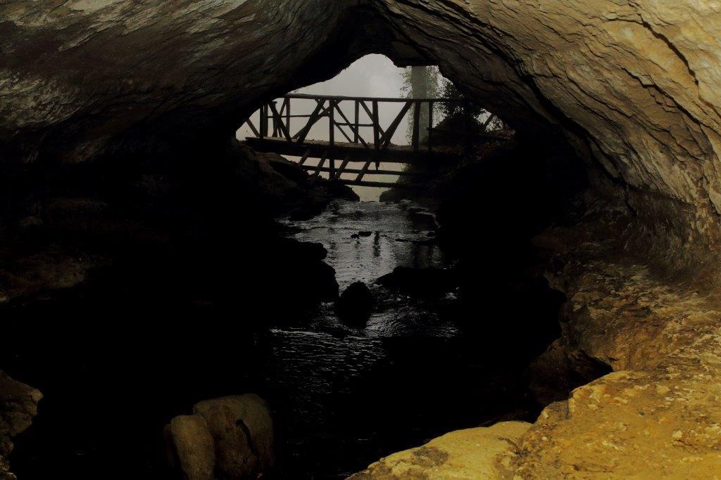 Il fosso degli Olmetti ritaglia il Parco della Selvotta, dove la vegetazione e i cunicoli si sposano e rappresentano uno dei lughi più suggestivi.