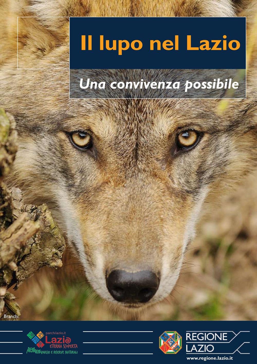 Il lupo nel Lazio