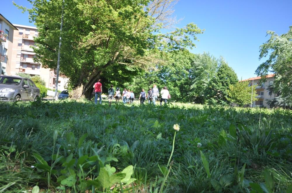 Passeggiata con merenda: alla scoperta dell'area destinata a parco  (5/6)