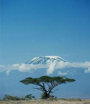 Le mont Kilimanjaro enneigé - Photo Pinterest