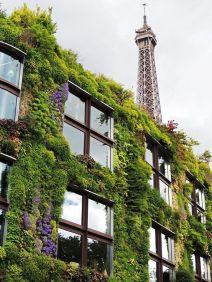 Patrick Blanc - Musée du quai Branly, Paris - Photo Pinterest
