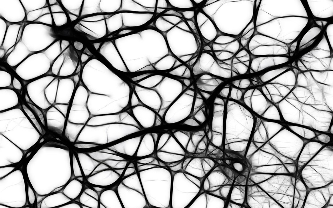 Neurons.AI Launches — The Network for AI Professionals
