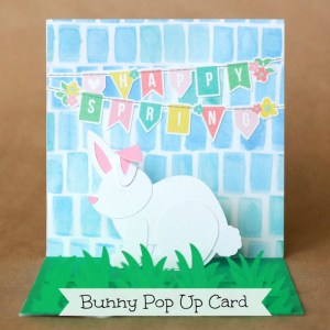 Spring Pop Up Bunny Card
