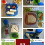 Almost Litterless School Lunch Ideas