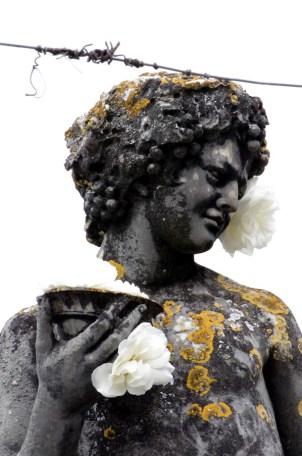 albi-tourisme-occitanie