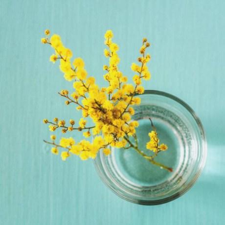 fleurs-2