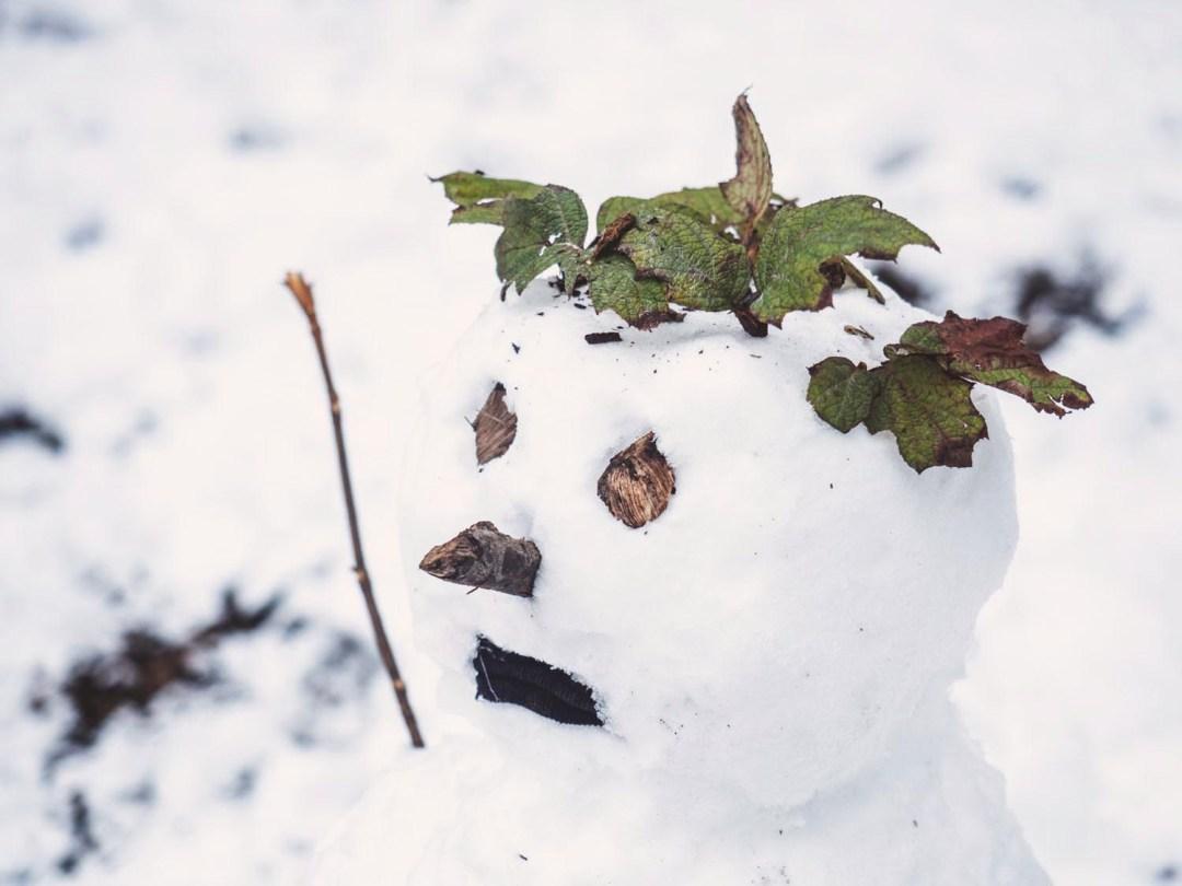 neige 2018 donostia