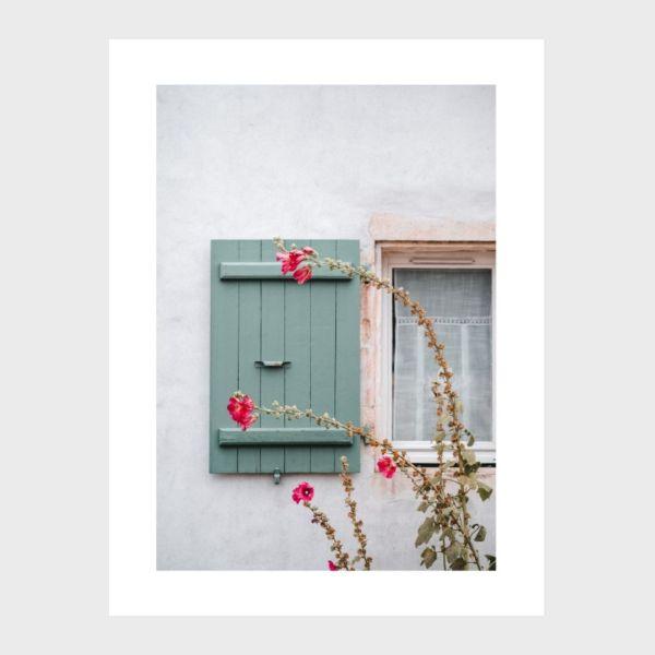 photo print roses trémières île de ré