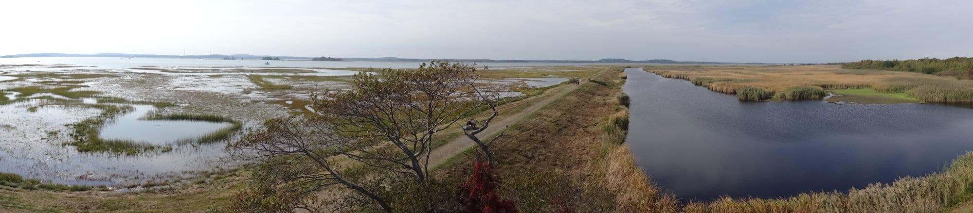 Les marais de Plum Island