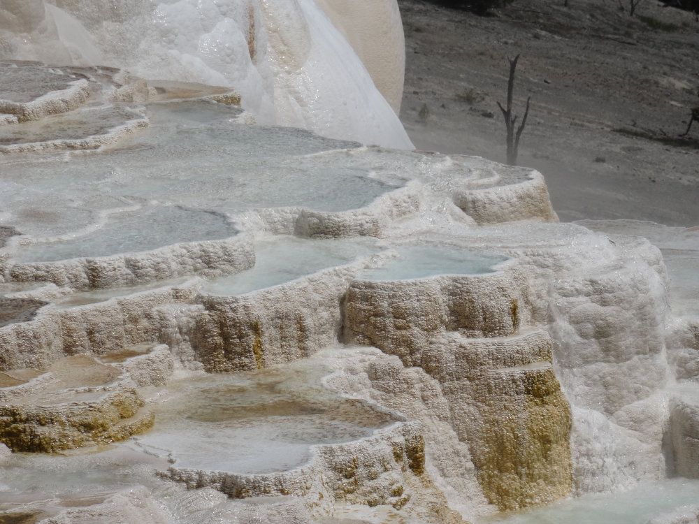 118_yellowstone_mammoth_hot_springs