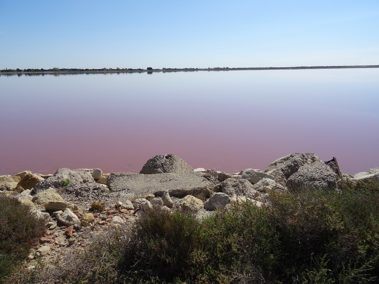 Les teintes rosées des étangs autour d'Aigues Mortes