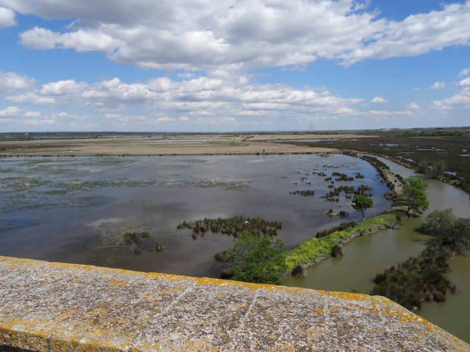 Vue sur les marais depuis la tour Carbonnière