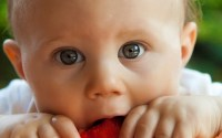 Picky Eating Habit of Your Kid