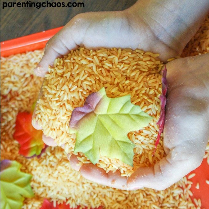 We're finally in the season of pumpkin - it's everywhere! There's no better excuse to enjoy this pumpkin scented sensory rice activity for kids.