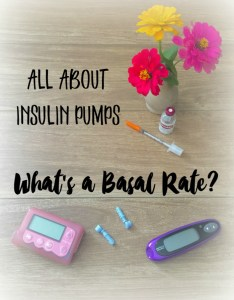 basal 234x300 Whats a Basal Rate?