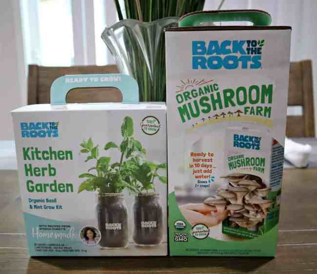 Back to Roots DIY Herb Grow Kits