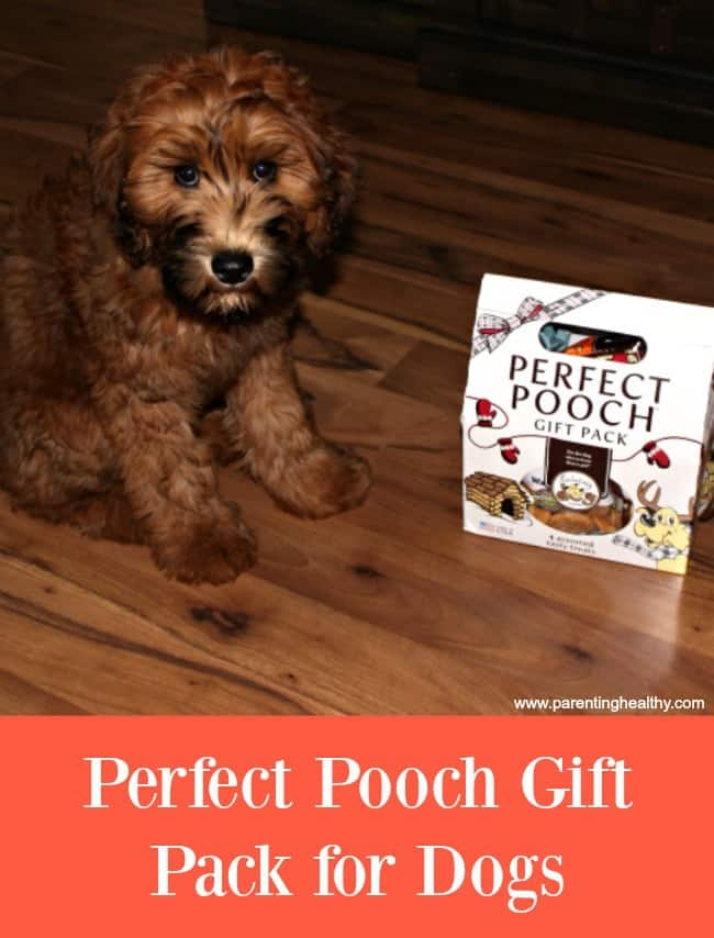 Perfect Pooch Gift Pack for Dogs