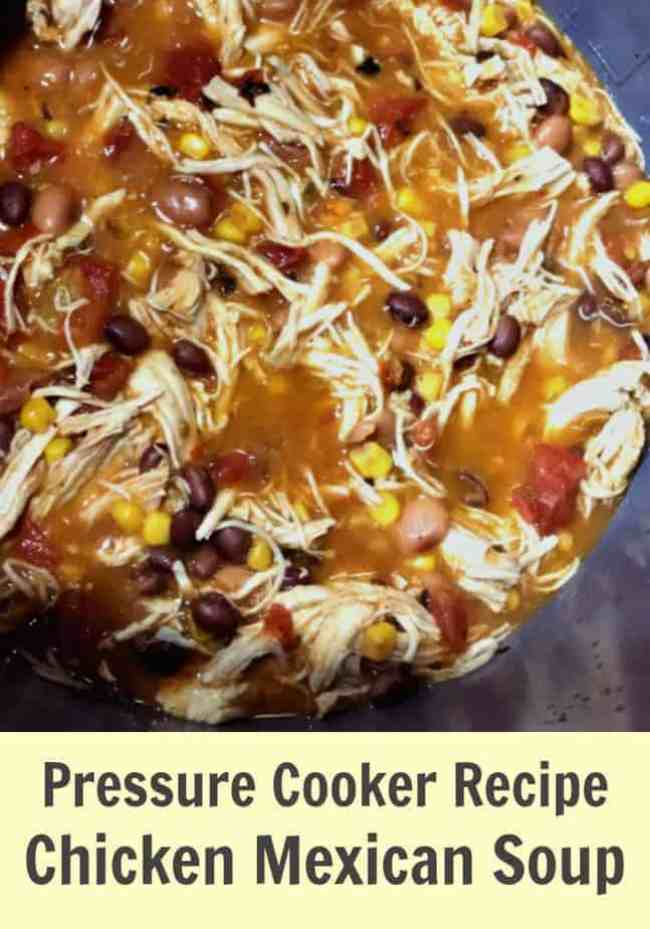 Pressure Cooker Recipe - Chicken Mexican Soup