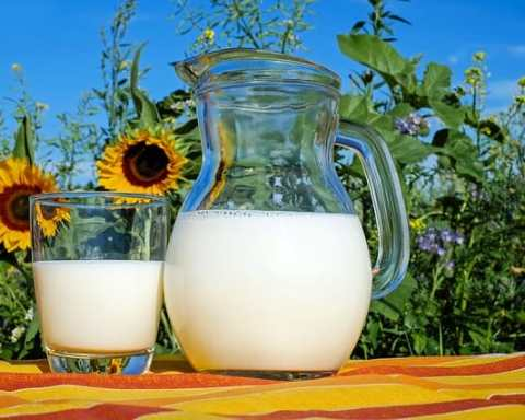 Cow's milk protein allergy in kids