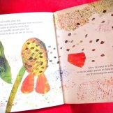 une si petite graine - livre enfant - parents-epanouis.com