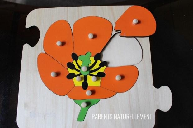 Puzzle botanique Montessori